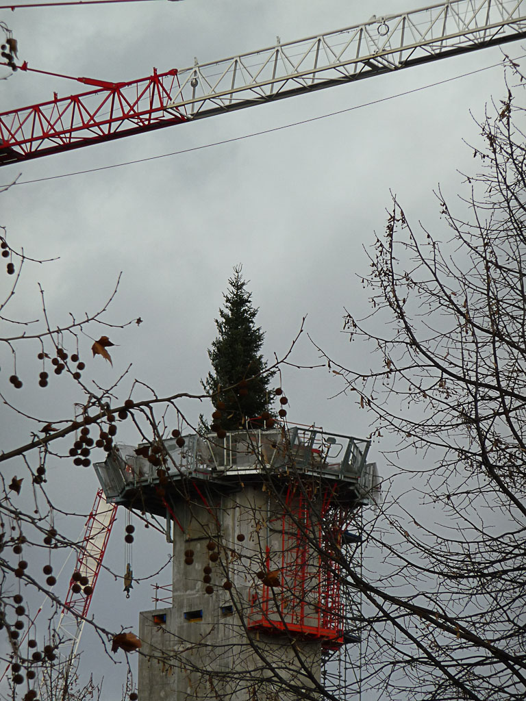 Sapin sur le chantier de la Philharmonie de Paris, Parc de la Villette, Paris 19e (75)