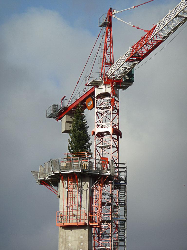 Sapin sur le chantier de la Philharmonie de Paris, Parc de la Villette, Paris 19e (75), 27 décembre 2012, photo Alain Delavie