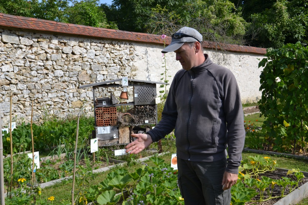 Grand prix 2012 - Catégorie 4 - Photo 1 - jardin de l'association des maisons du bornage à Veneux-Les-Sablons (Seine-et-Marne) (©: Dominique Daviot - GNIS)