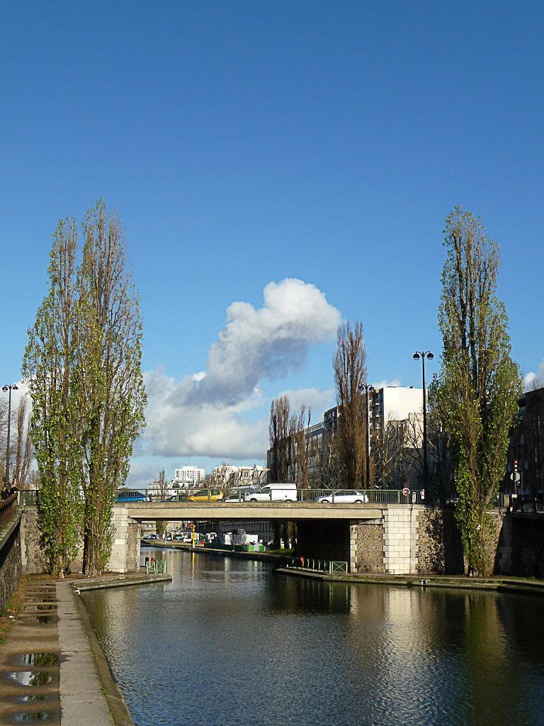 Peupliers avec leur feuillage en plein hiver au bord du Canal Saint-Martin, Paris 10e (75)