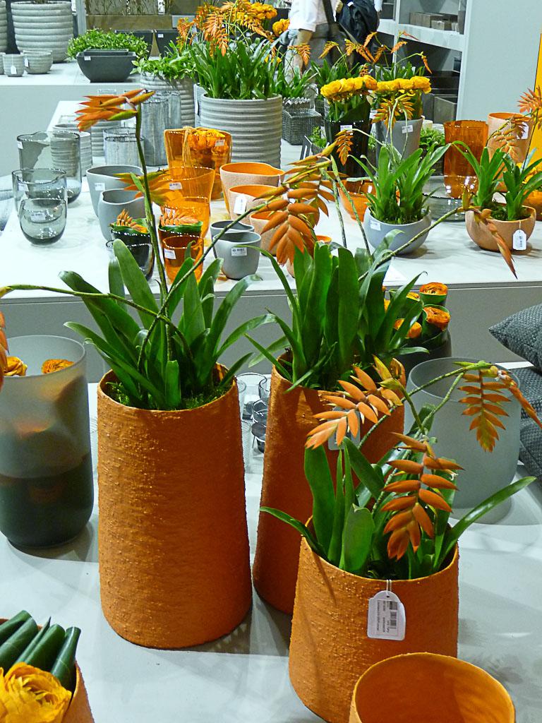 Tillandsia dyeriana, DHM, salon Maison & Objet 2012, Parc des Expositions Paris Nord Villepinte