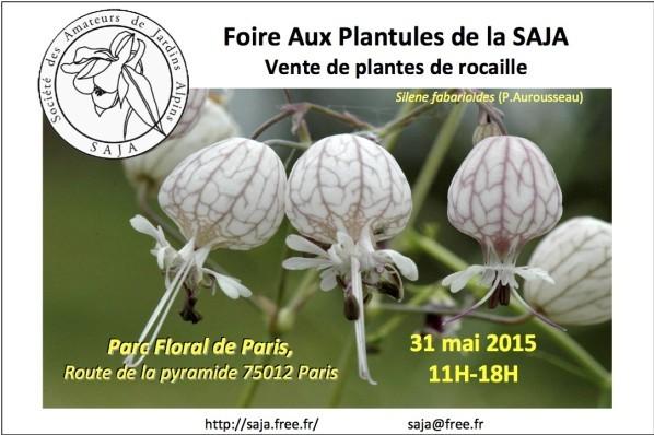 Foire aux plantules de la Saja au Parc Floral de Paris, mai 2015
