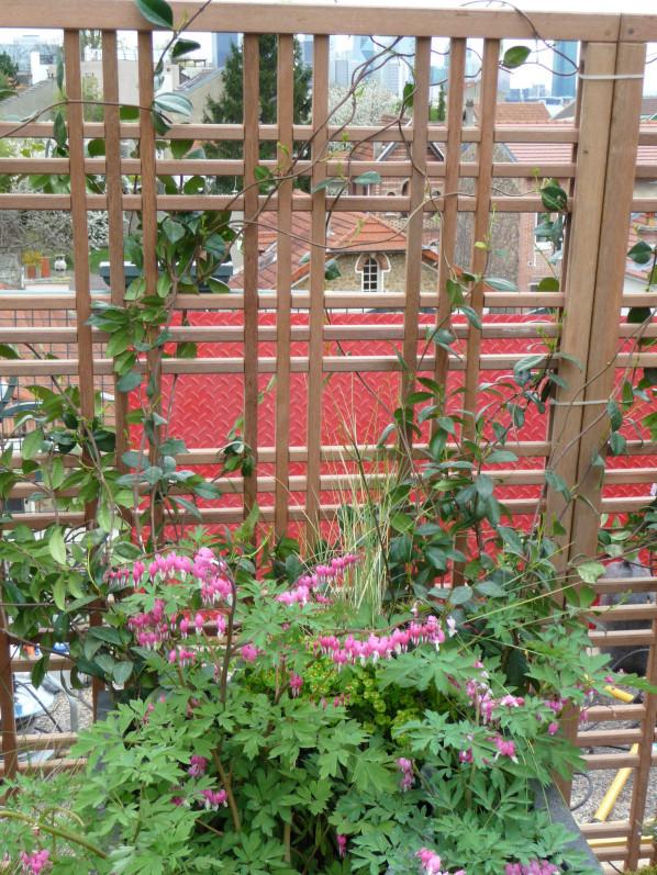 salon Jardins en Seine 2015, terrasse du Fécheray, Suresnes (92