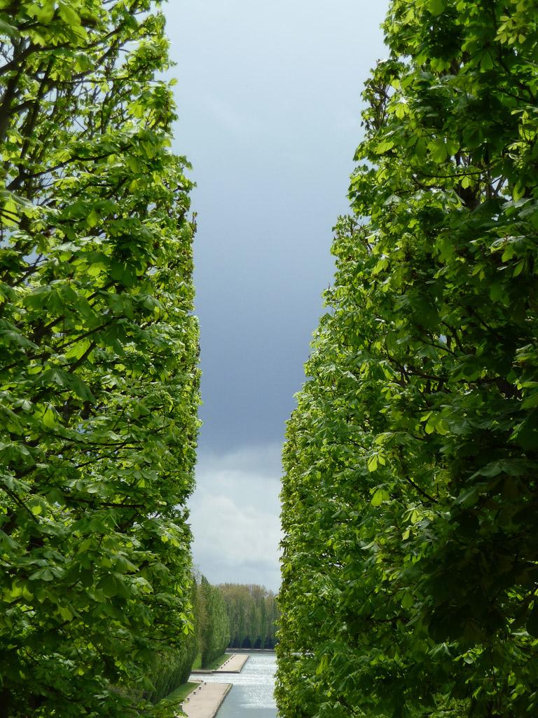 Rideaux d'arbres parallèles avec percée sur le ciel printanier menaçant, Parc de Sceaux