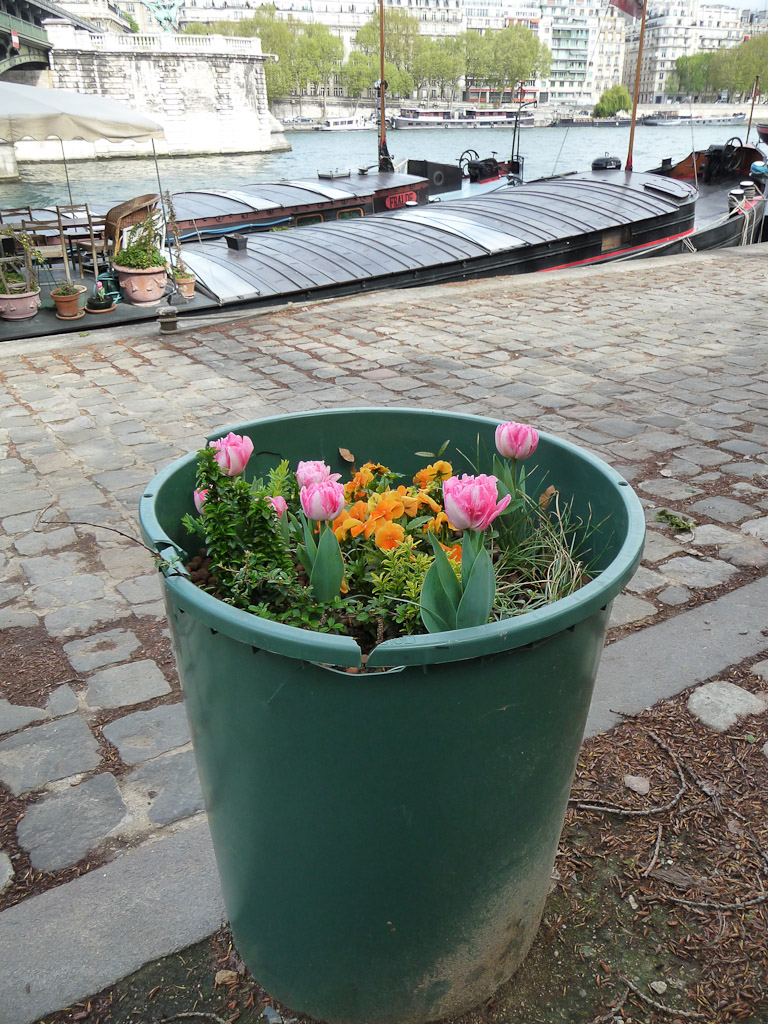 Mini jardin fleuri dans une poubelle, port de Suffren, Paris 7e