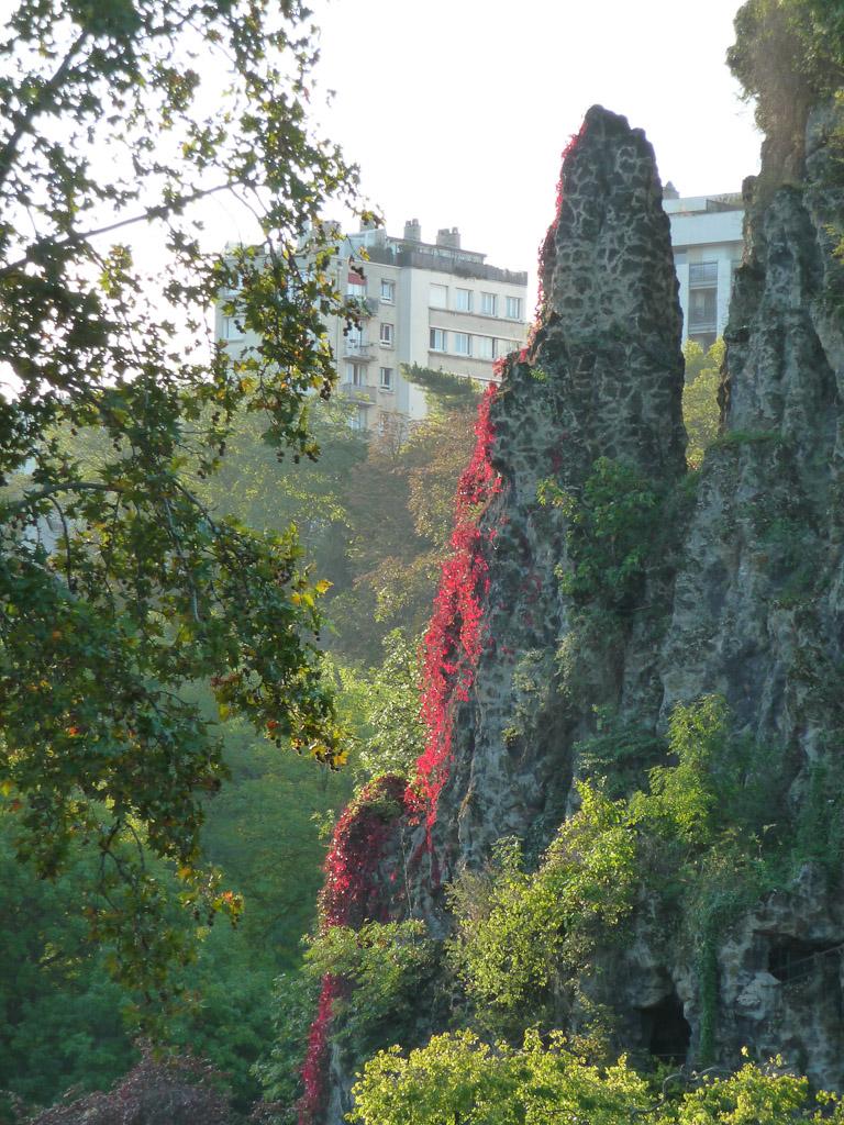 Vigne vierge flamboyante, vue de l'Île du Belvédère dans la parc des Buttes-Chaumont, Paris 19e (75)