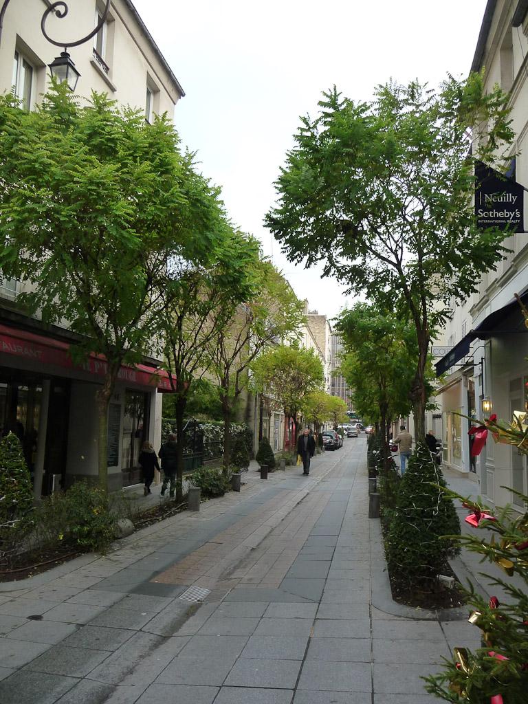 Acacias feuillus en début d'hiver dans la rue de Longchamps, Neuilly-sur-Seine (92)