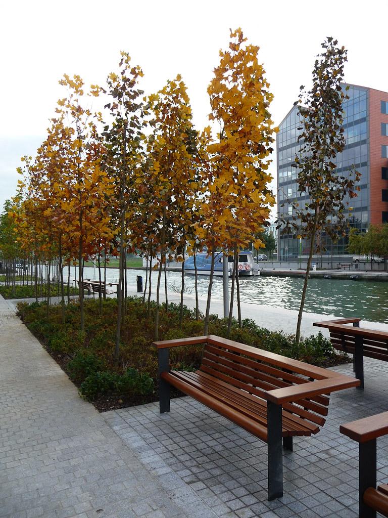 L'automne dans le parc du Millénaire, Paris 19e (75)