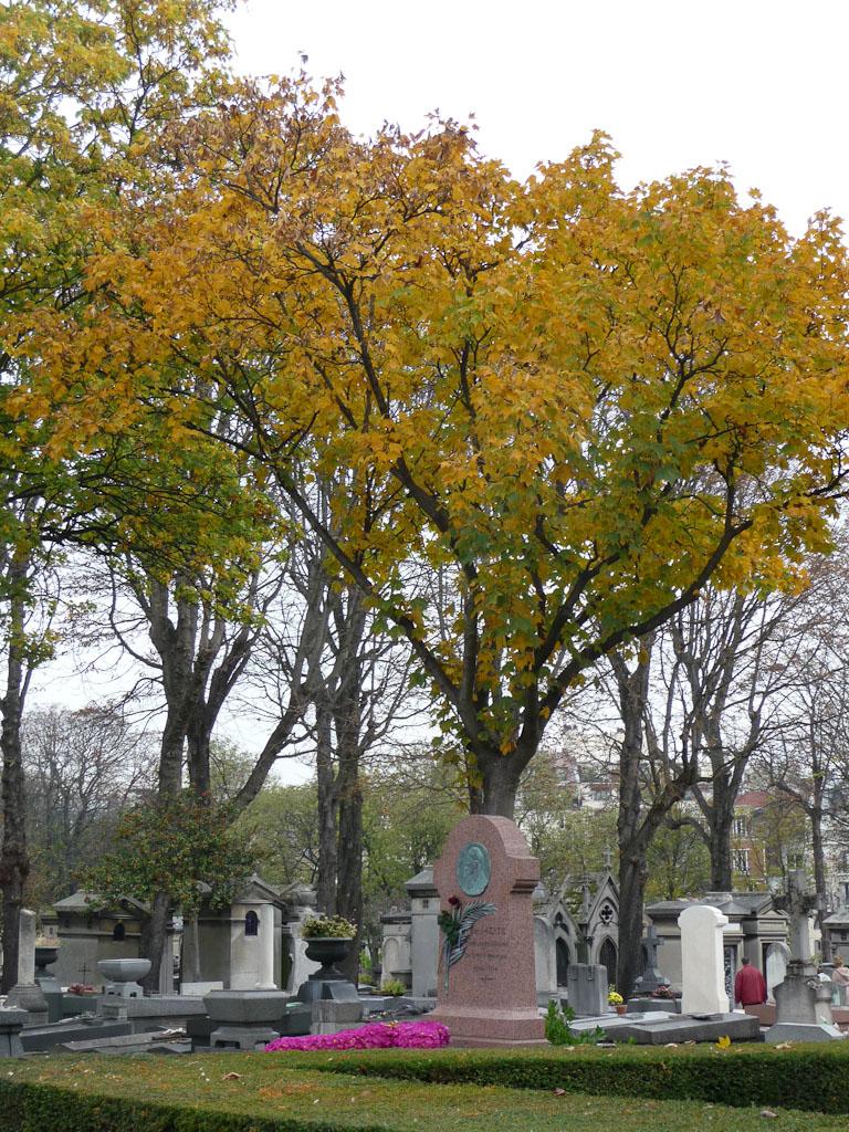 L'automne dans le cimetière du Père Lachaise, Paris 20e (75), 29 octobre 2011, photo Alain Delavie