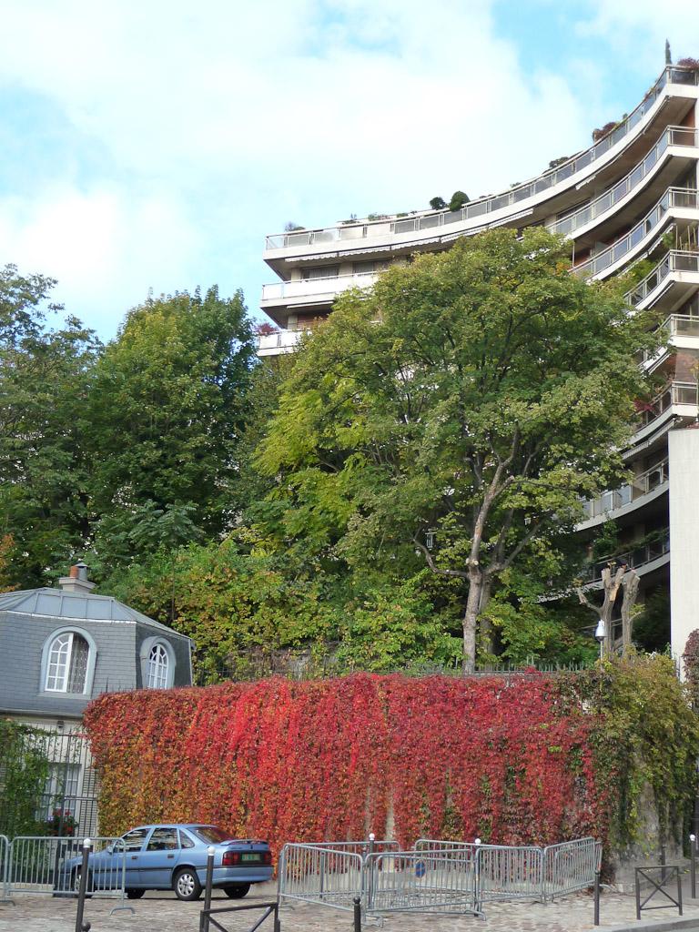 Vigne vierge flamboyante en automne près du parc de Passy, Paris 16e (75)