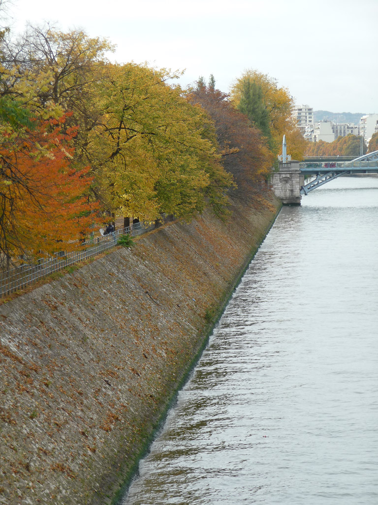 Ile aux Cygnes en automne, Paris 15e (75), 30 octobre 2011, photo Alain Delavie