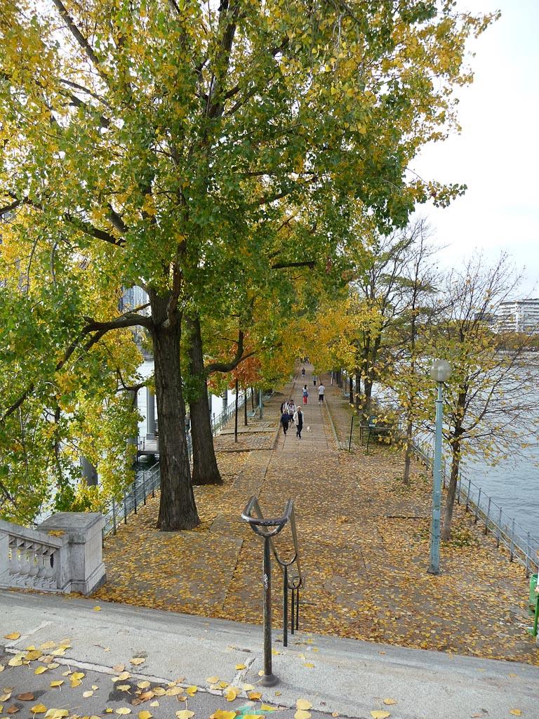 Allée des Cygnes en automne, Paris 15e (75)