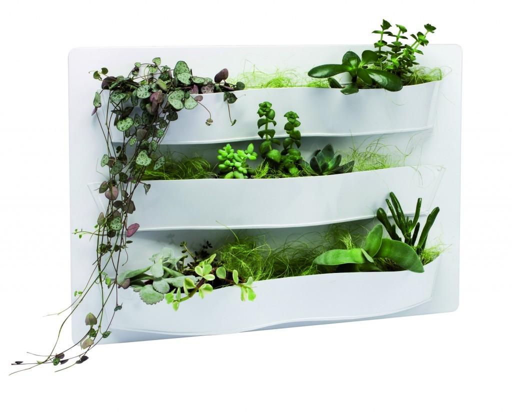 Tableau végétal désign chez Nature & Découvertes