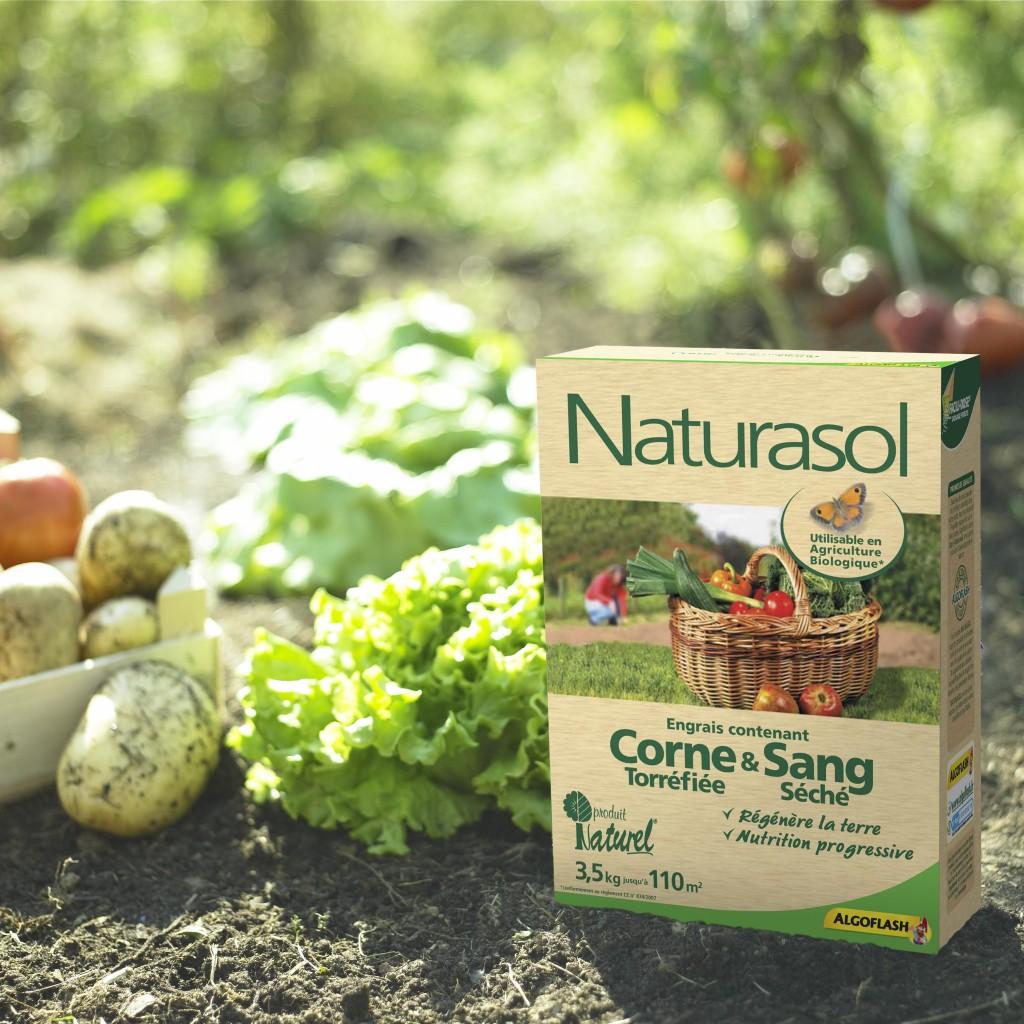 Engrais Corne & Sang (Algoflash Naturasol)