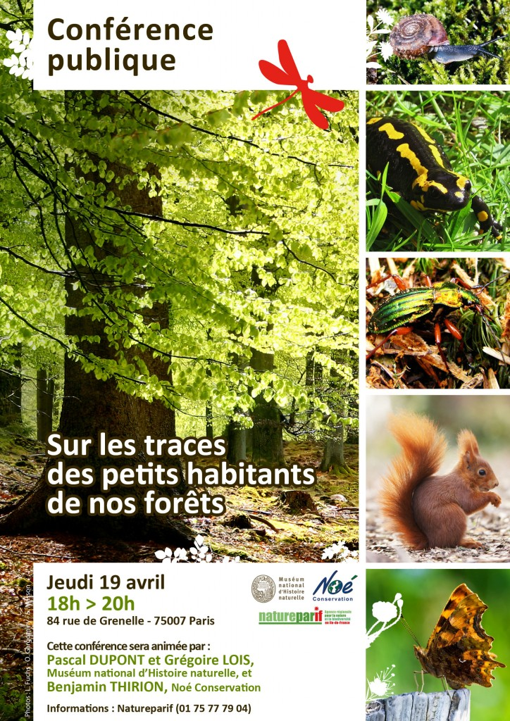 """Rencontre """"Sur les traces des petits habitants de nos forêts"""" (Natureparif)"""