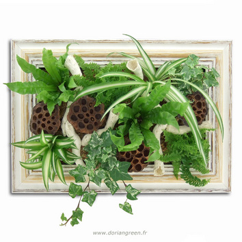 Tableau végétal Panorama Black & White, création Dorian Green