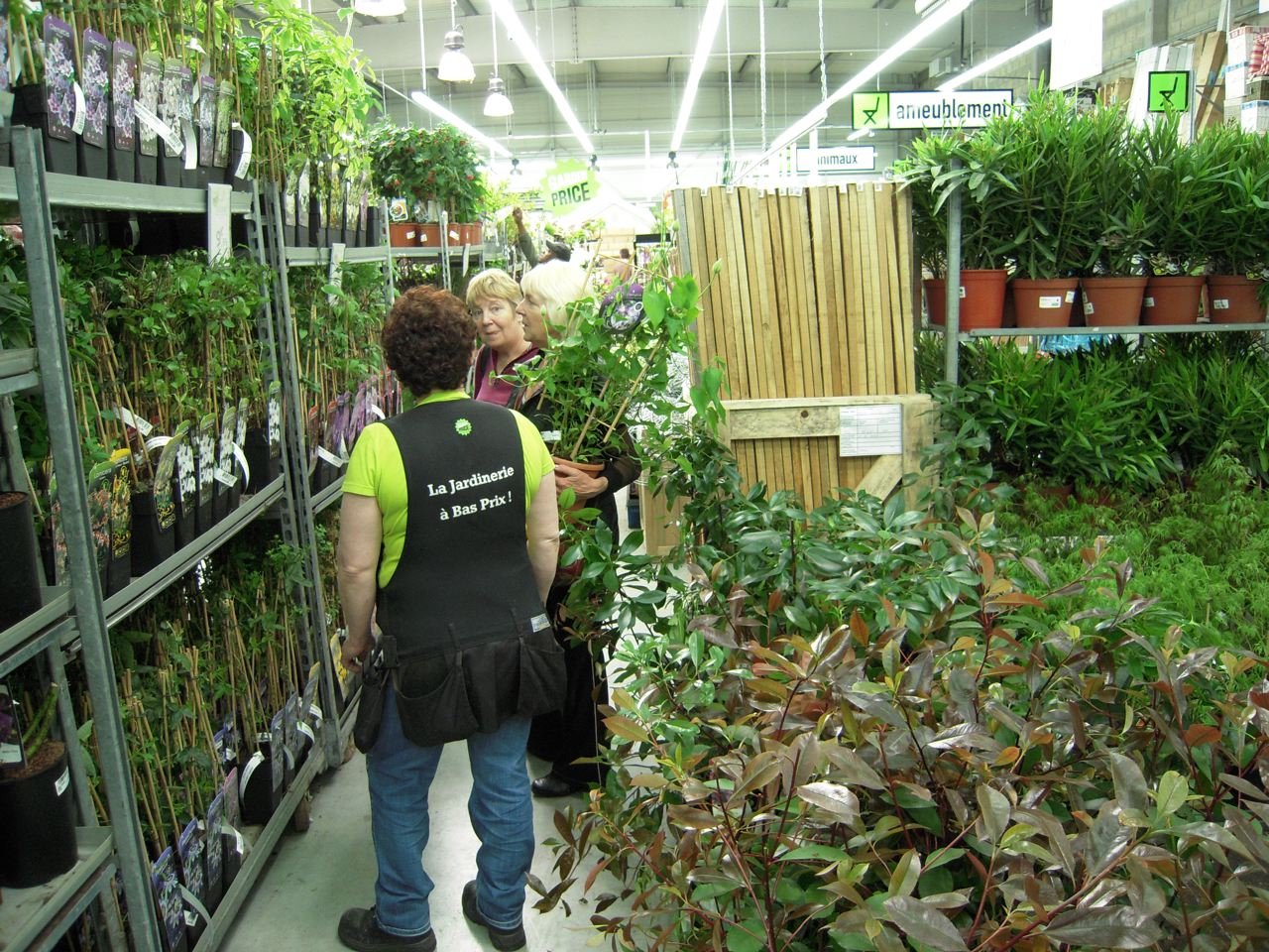Concept store jardinerie hard discount