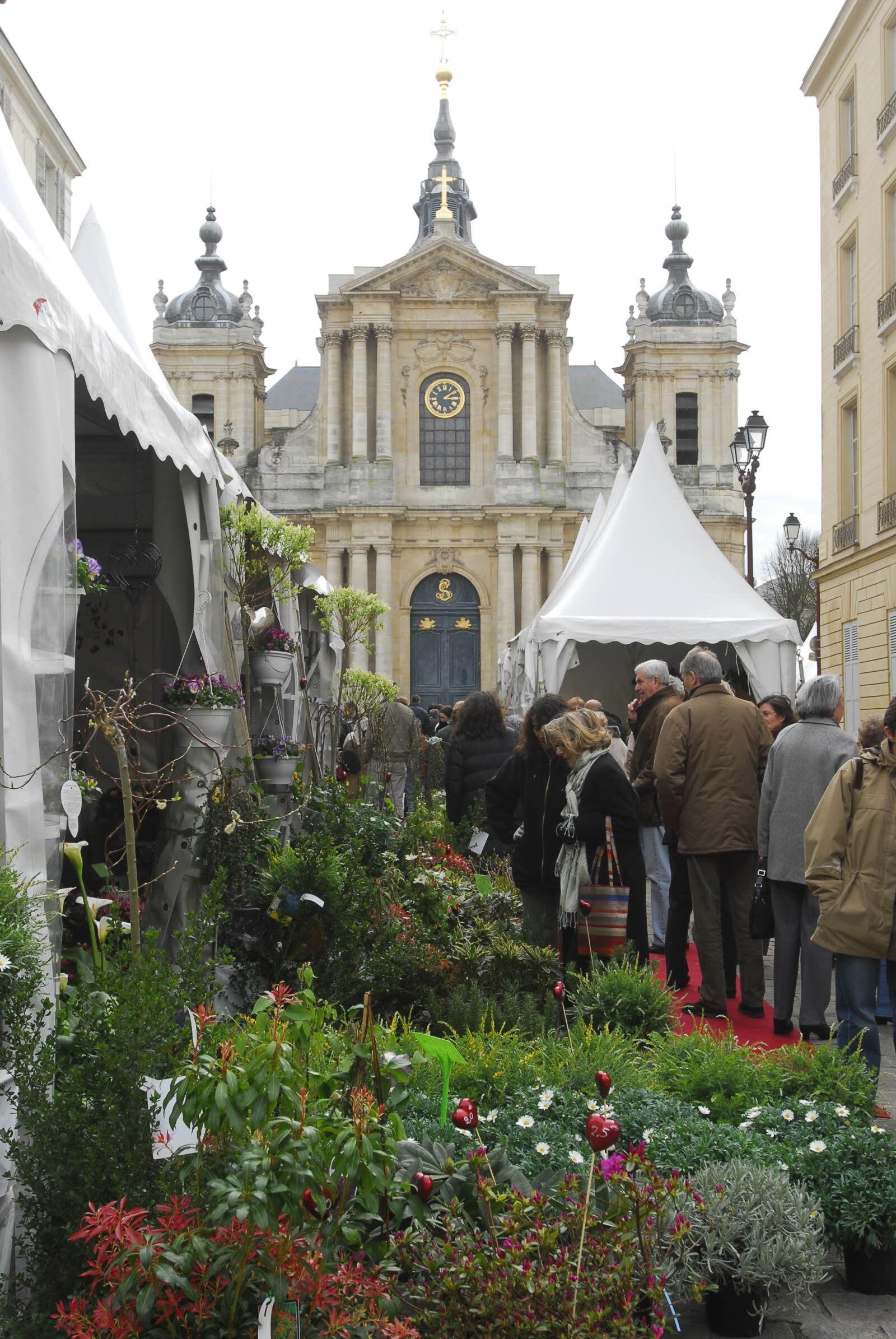 Marché horticole, place Saint-Louis à Versailles (78)