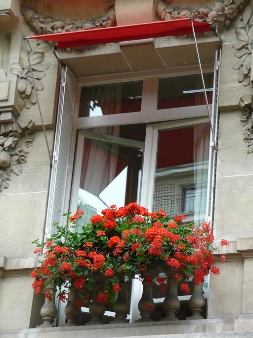 Façade fleurie avec des pélargoniums de l'Hôtel Plaza Athénée, Paris 8e (75)
