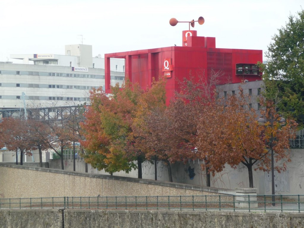 Chênes américains au feuillage d'automne, parc de la Villette, photo Alain Delavie
