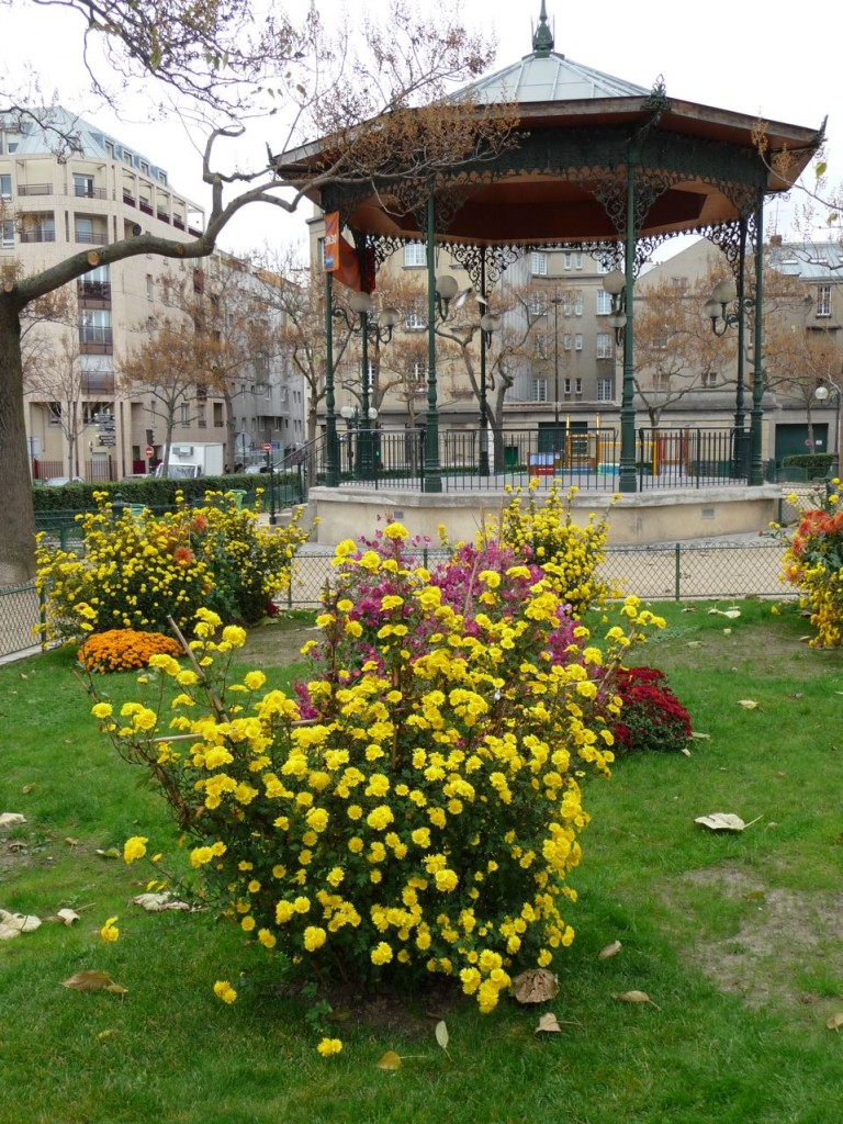 Chrysanthèmes dans le square de la place de Bitche, kiosque à musique, Paris 19ème (75), photo Alain Delavie