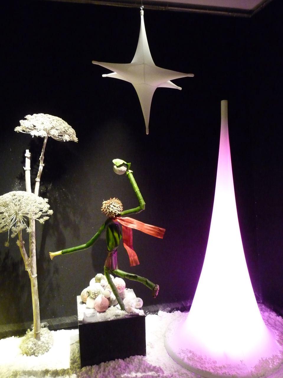 Art floral de Noël, création de Marie-Claude Tantin et Françoise Gaignot (La Cerisaie, Paris), exposition Tempête de neige (SNHF), décembre 2009, photo Alain Delavie