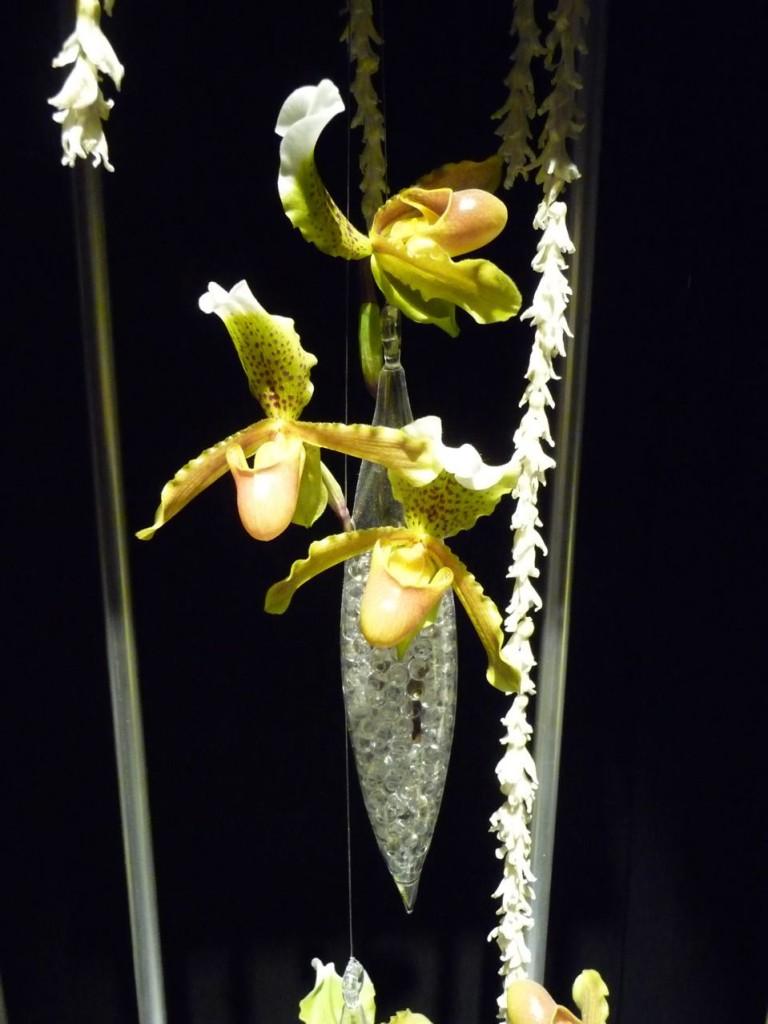 Art floral de Noël, création de Christine Thivillier, exposition Tempête de neige (SNHF), décembre 2009, photo Alain Delavie