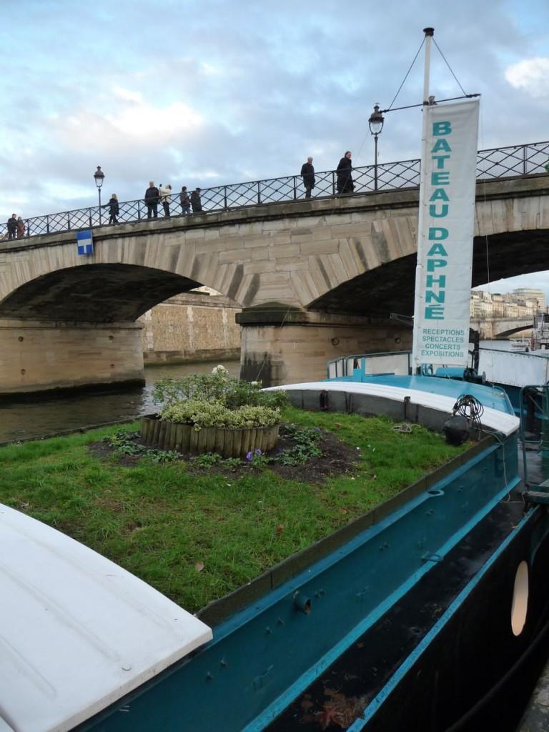 Mini jardin sur le bateau Daphné, quai de Montebello (Paris 5ème), décembre 2009, photo Alain Delavie