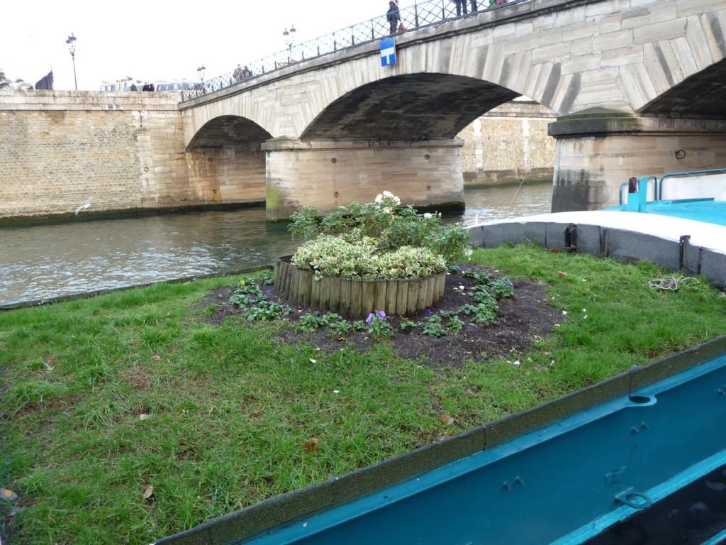 Le mini jardin du bateau Daphné sur la Seine le long du quai de Montebello (Paris 5ème), décembre 2009, photo Alain Delavie