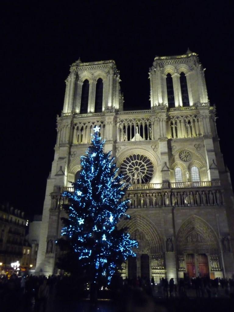 Grand sapin de Noël illuminé au pied de Nôtre-Dame (Paris 1er), photo Alain Delavie