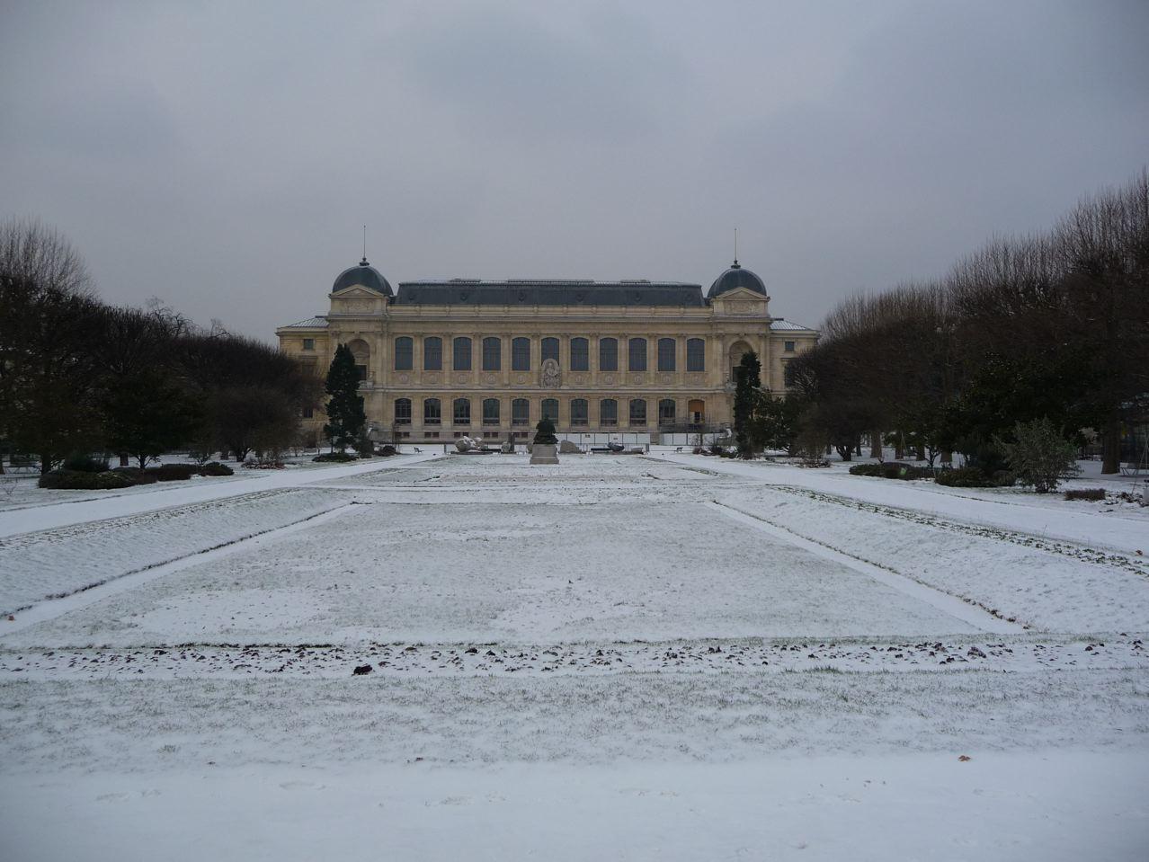 Le Jardin des Plantes sous la neige en hiver