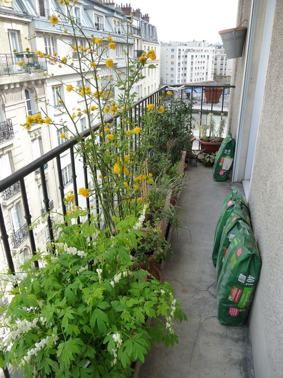 Travaux de jardinage sur balcon au printemps