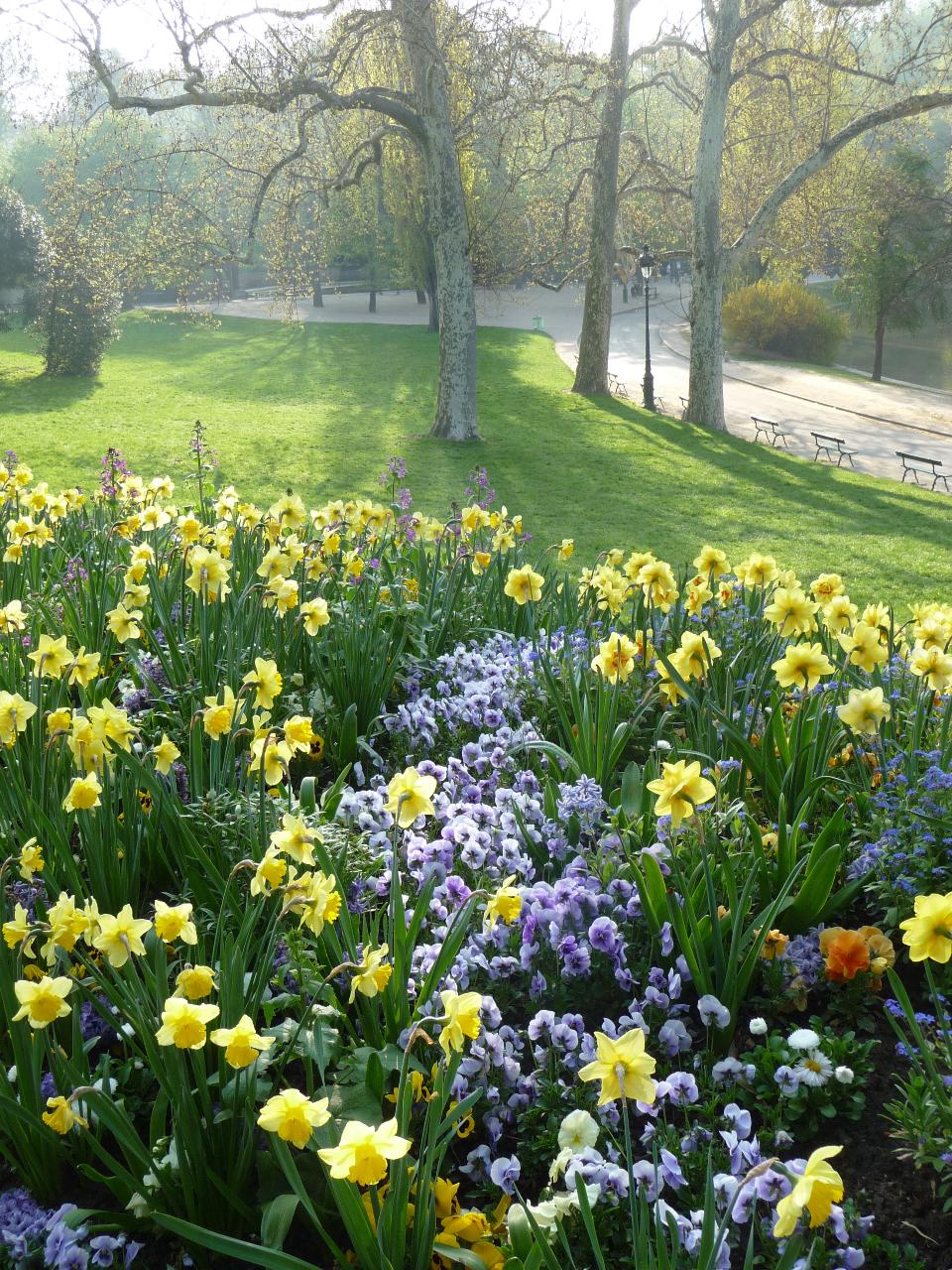 Les floraisons printanières dans les jardins de Paris