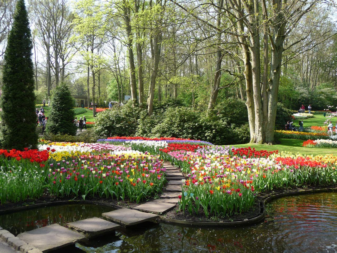 Les floraisons printanières dans le parc de Keukenhof en Hollande