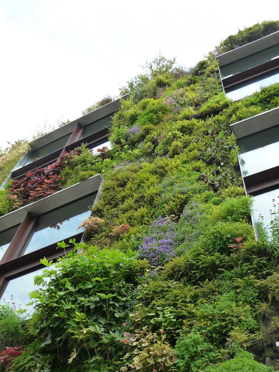 Jardin suspendu au printemps dans Paris