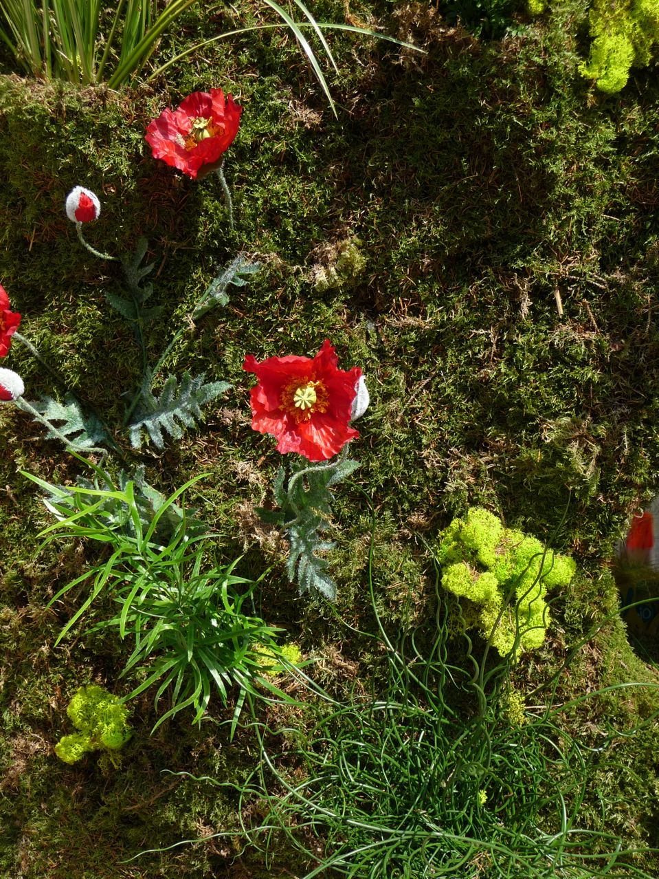Jardin vertical éphémère