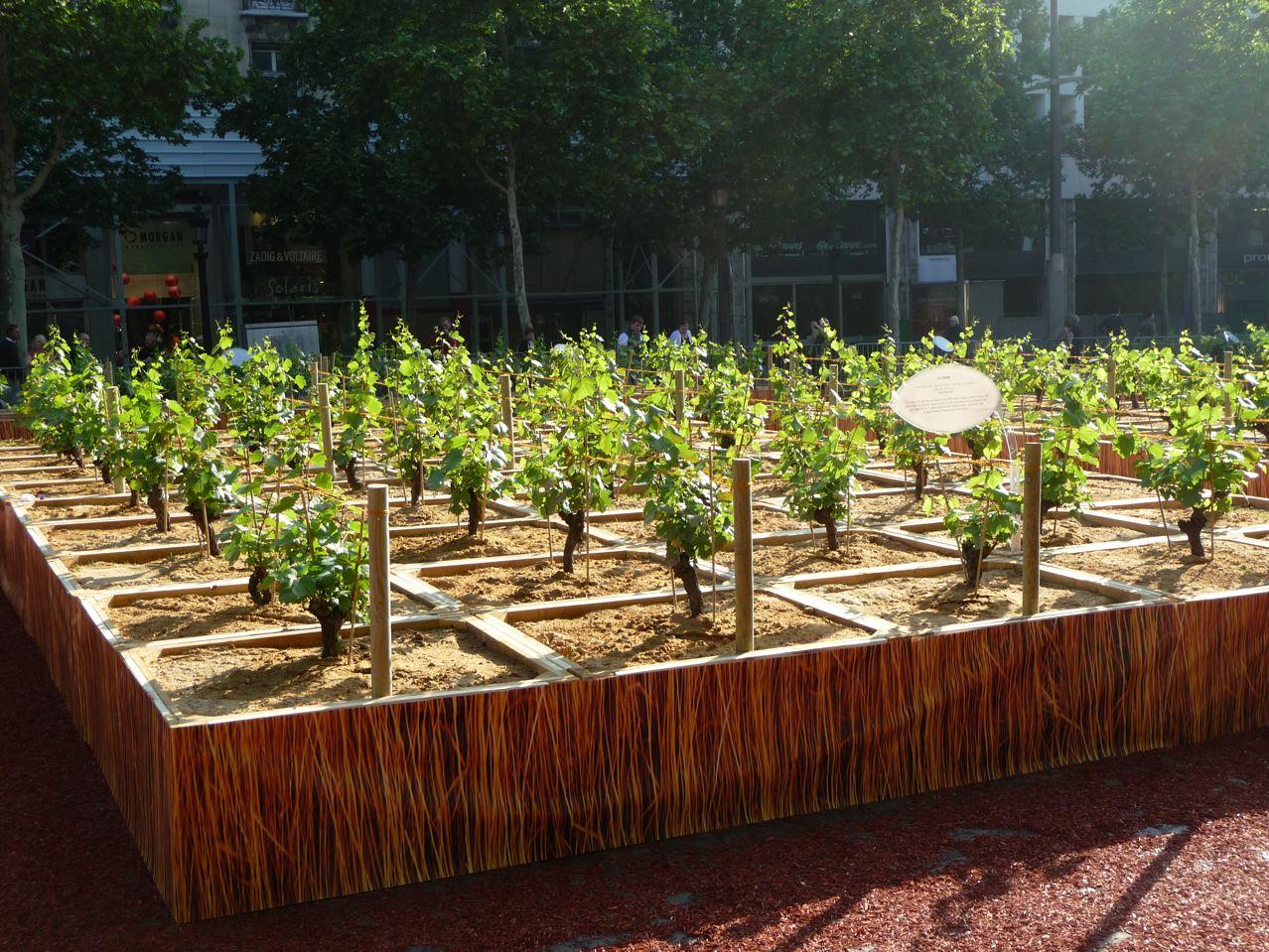 80 % de la production agricole française représentée sur les Champs-Élysées