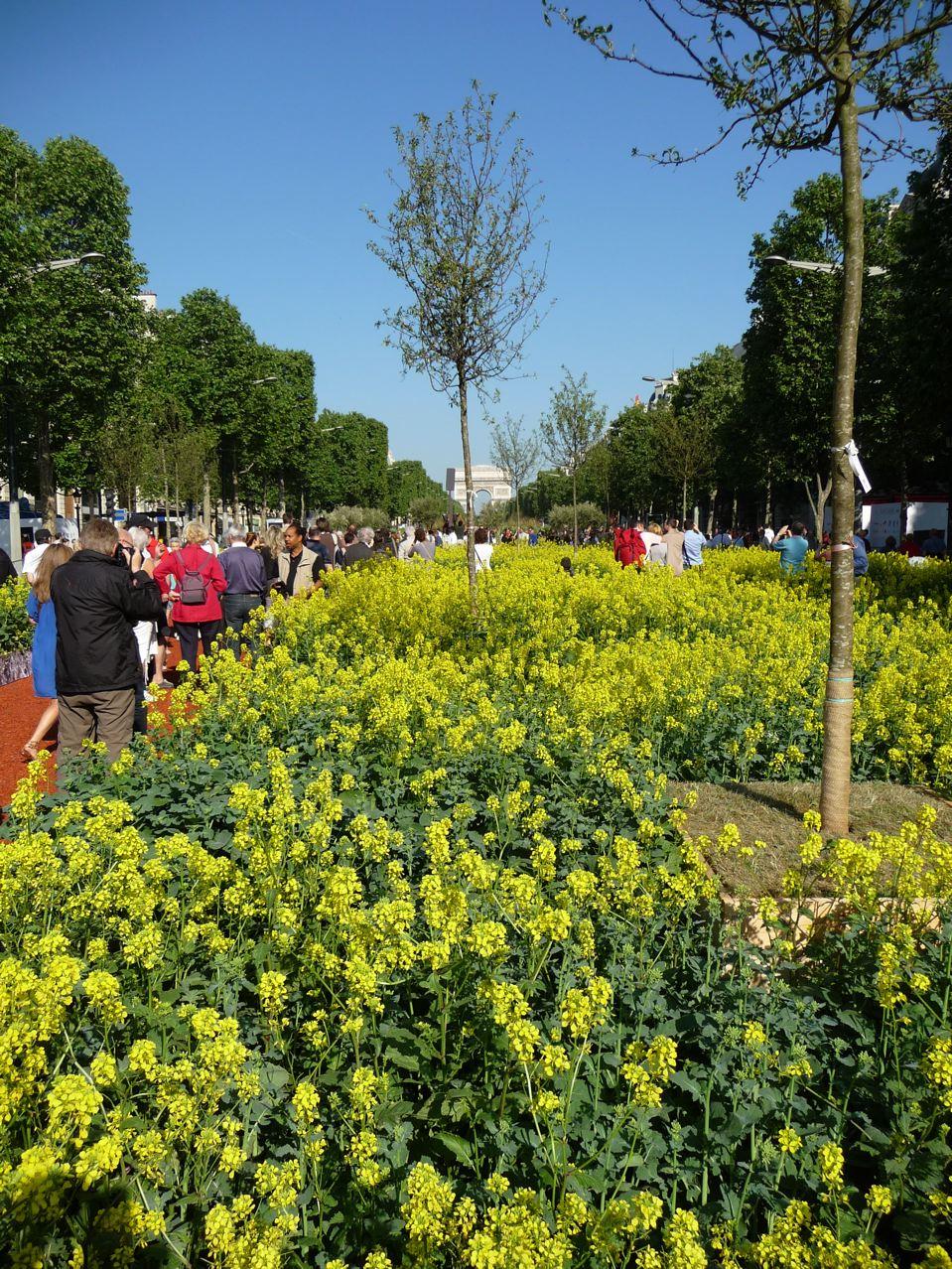 80 % de la production agricole française présentée sur les Champs-Élysées