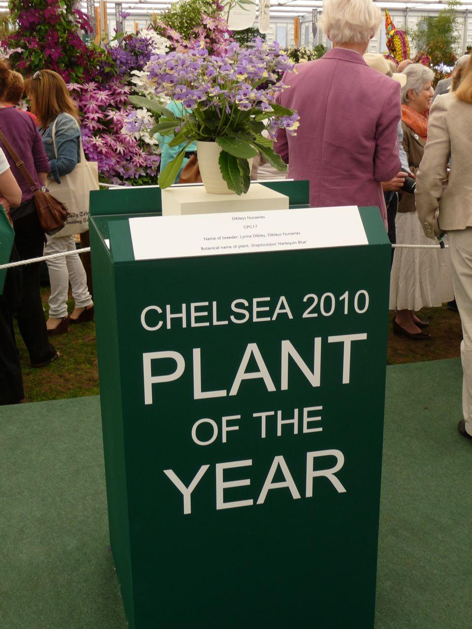 Plante de l'année pour le Chelsea Flower Show 2010