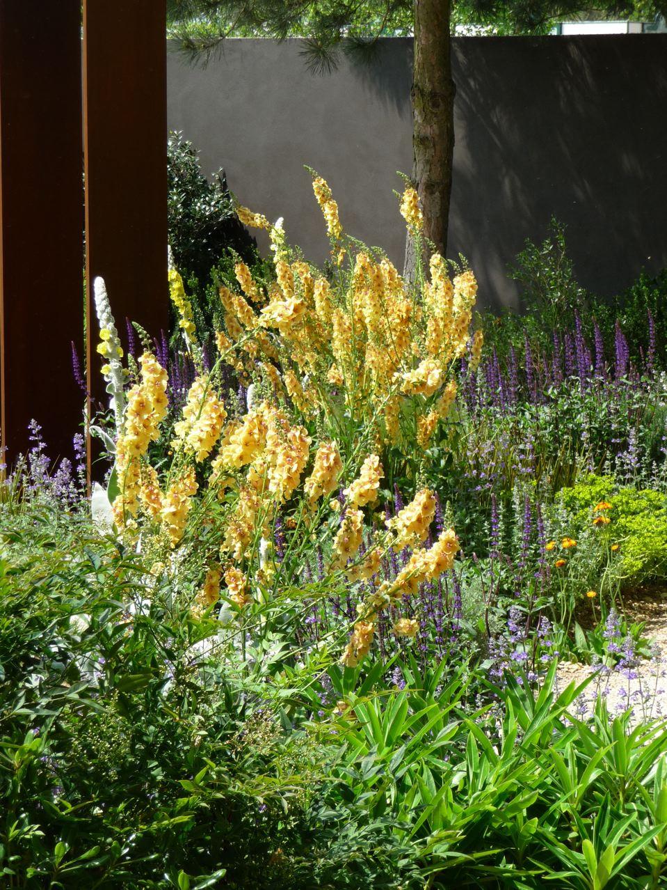 Jardin éphémère