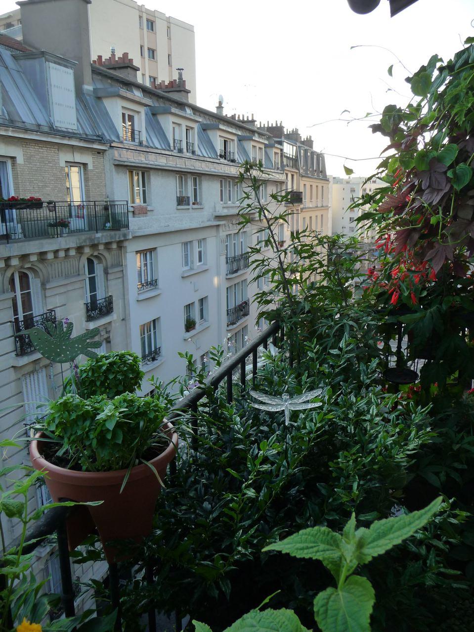 Lever de soleil sur mon balcon