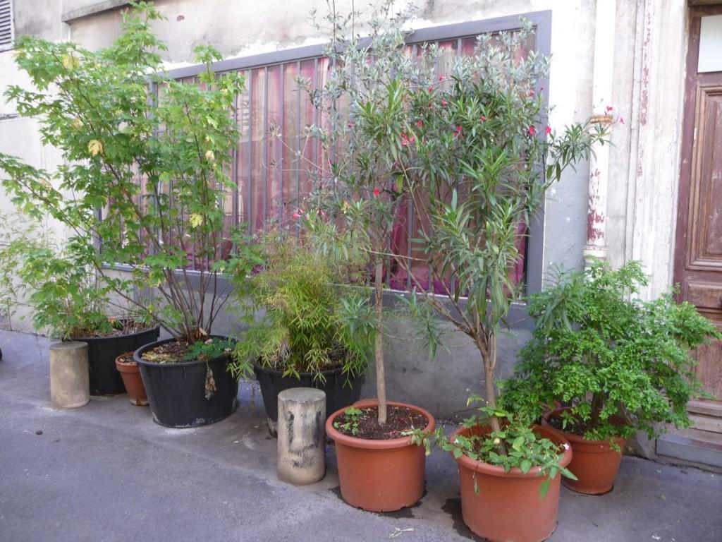 Paris côté jardin, Paris secret