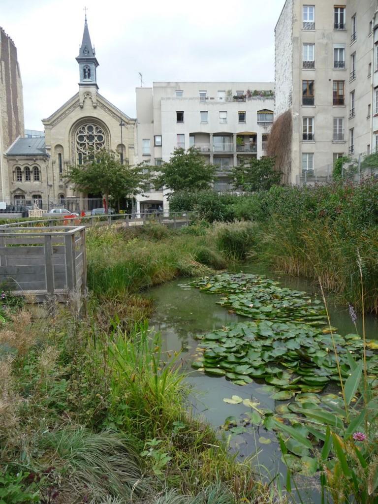 Petit havre de nature et de biodiversité dans Paris