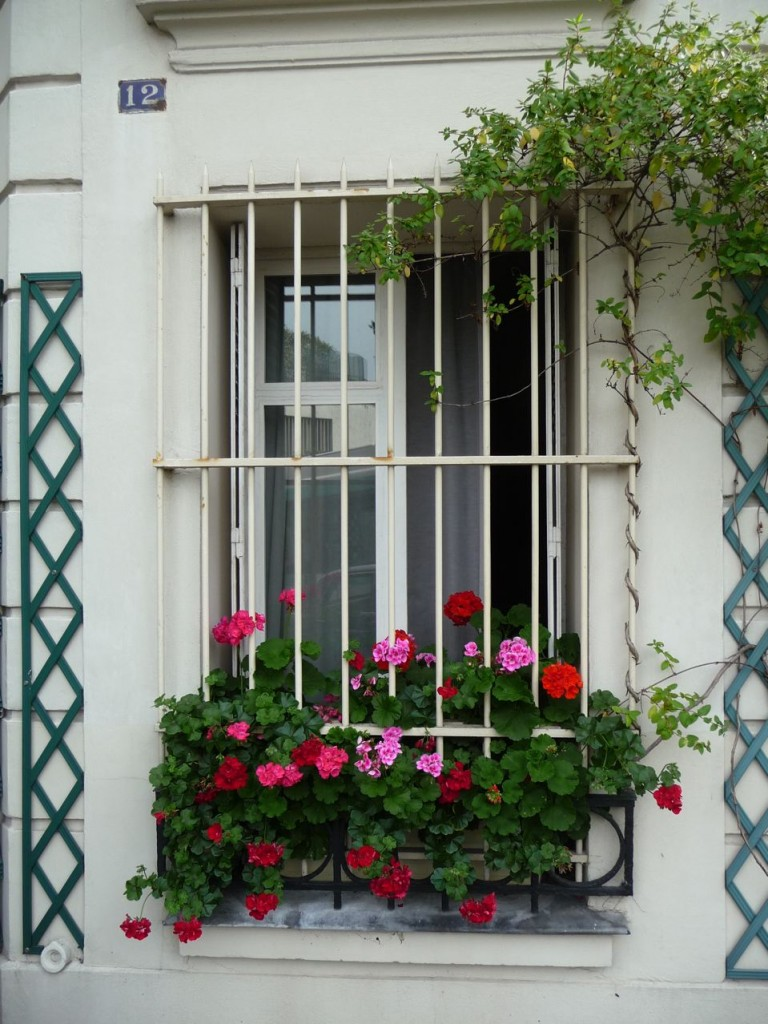 Paris côté jardin à Montmartre