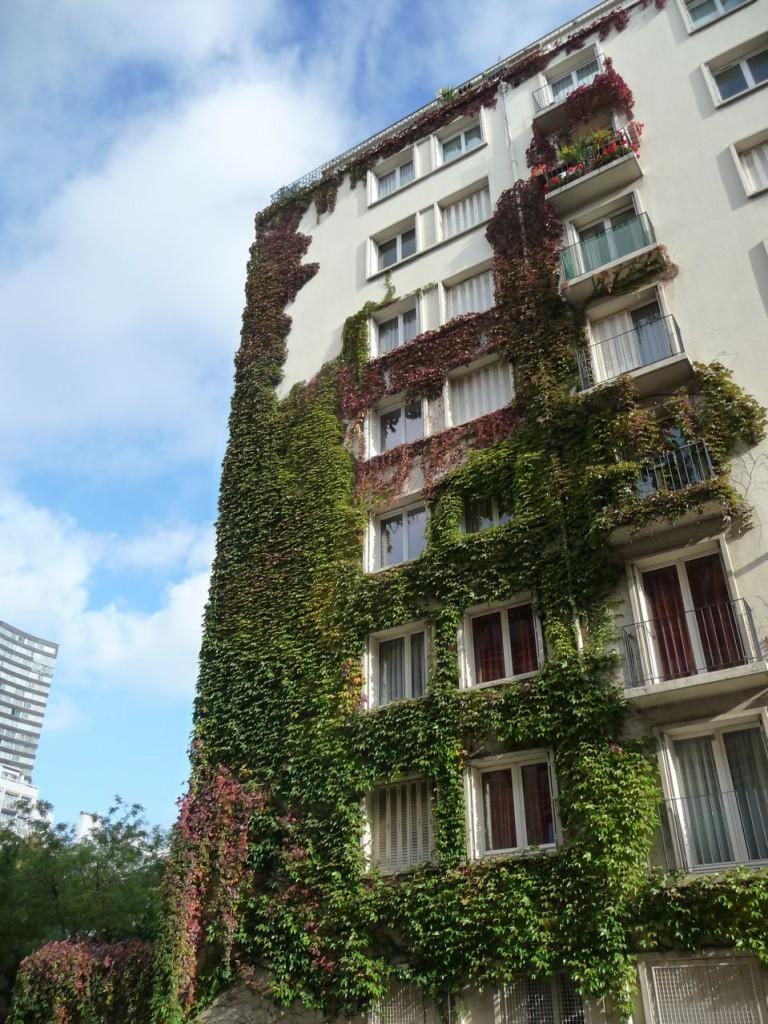 Mur végétal dans Paris