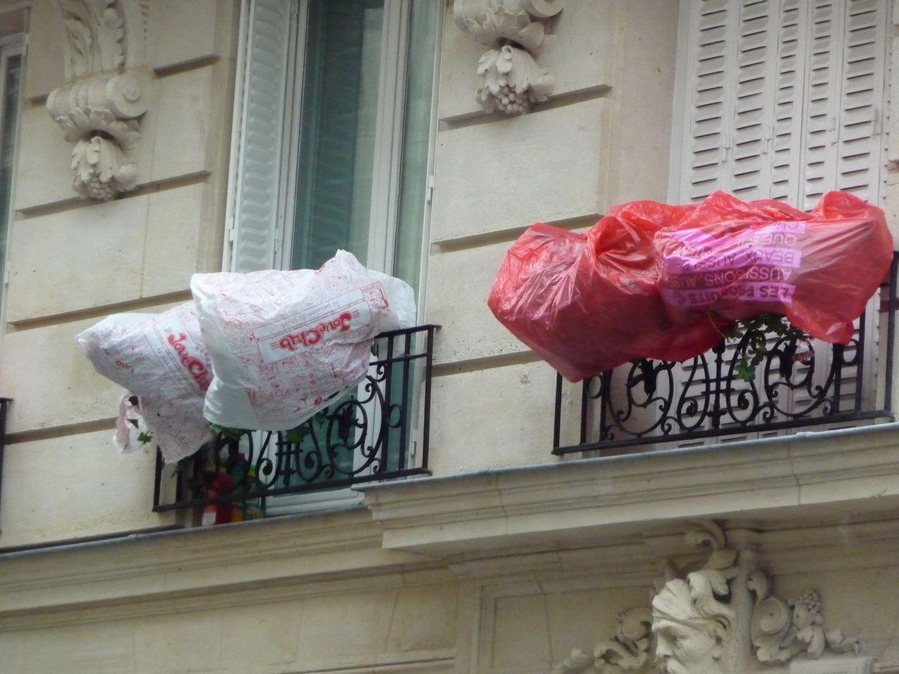 Protection hivernale des potées de plantes frileuses dans Paris