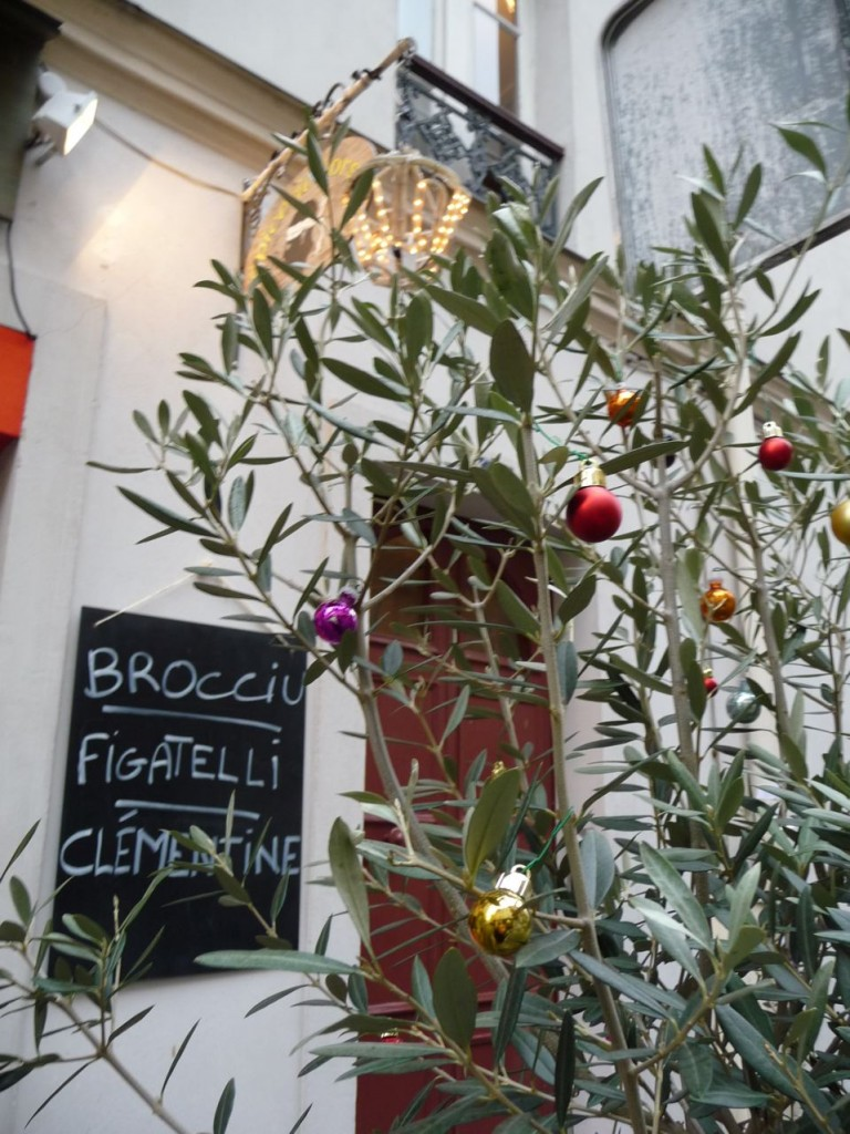 Arbre de Noël : un olivier