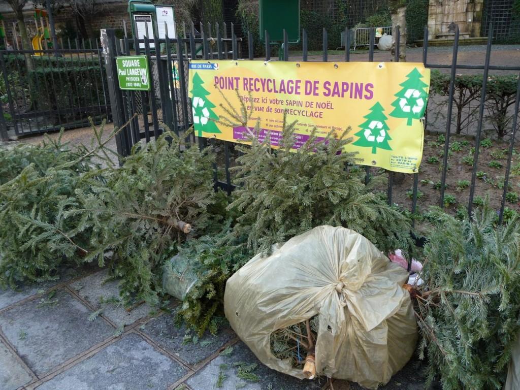 Recyclage des sapins de Noël dans Paris