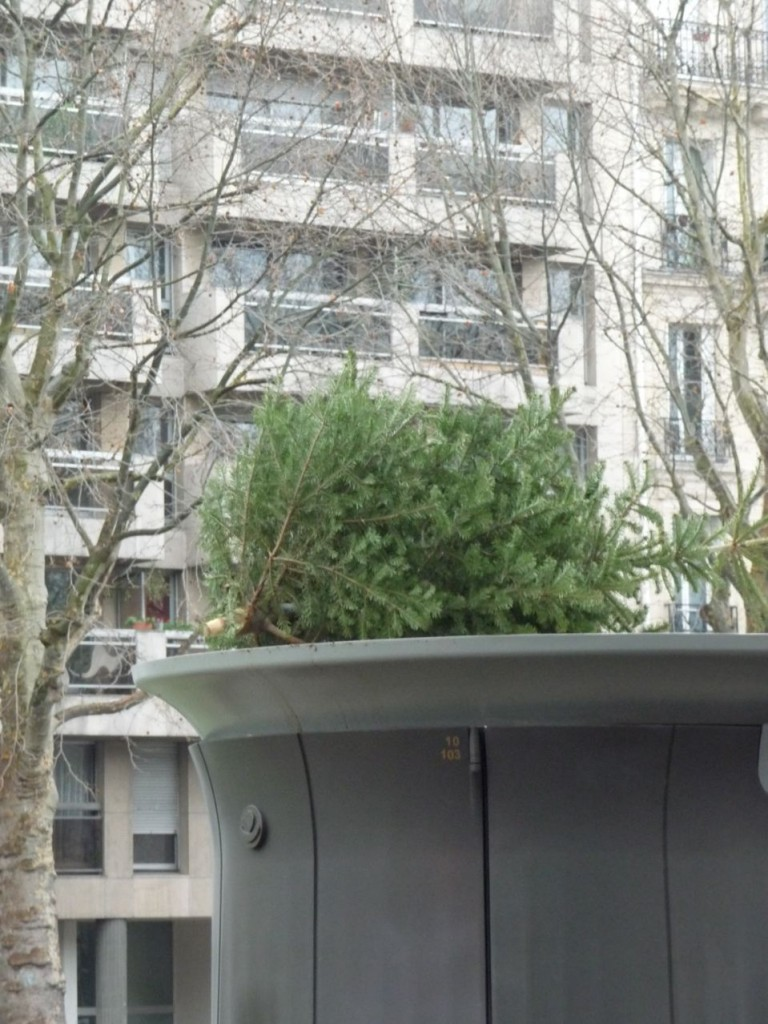 Détritus et ordures sur la voie publique dans Paris