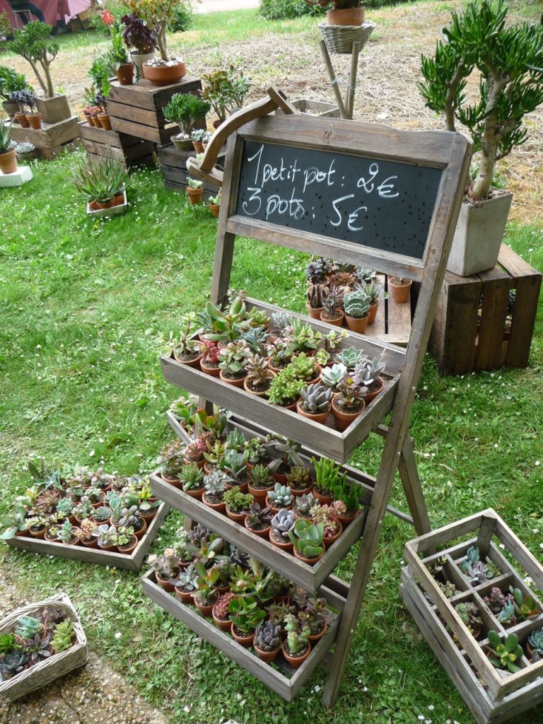 Mobilier de jardin : étagère échelle